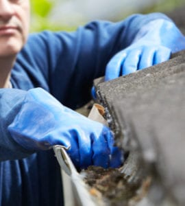 Are your drains and gutters ready for Autumn?
